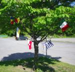 Yarn bombing in front of The Good Companions Seniors' Centre, Ottawa Canada